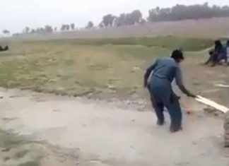 viral cricket video